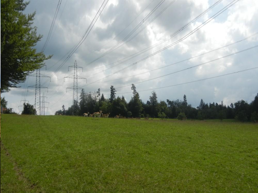 Komerční pozemky - Střední Čechy